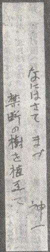 1980年2月号(短冊).jpg