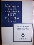 世界大衆小説全集8.JPG