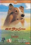 名犬ラッシー.jpg